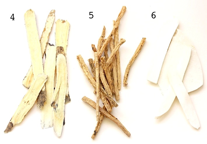 guide to alternative medicine herbs like milkvetch root, pilose asiabell root, nagaimo