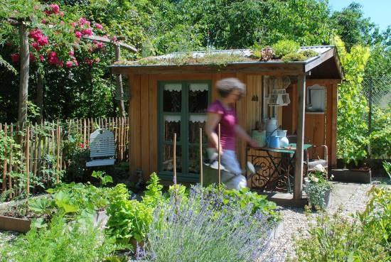 Ambiance jardin le jardin de pierrette for Ambiance jardin erpeldange