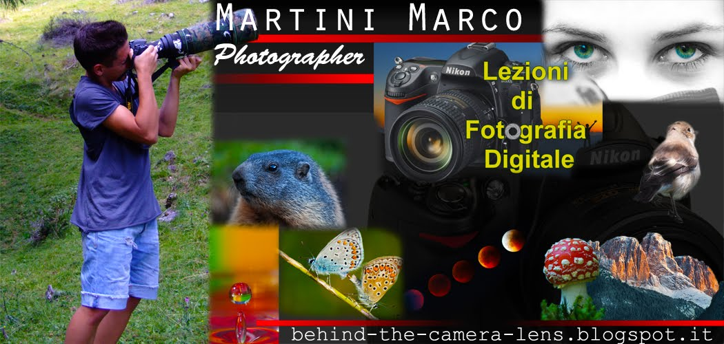 Marco's Nature Photography