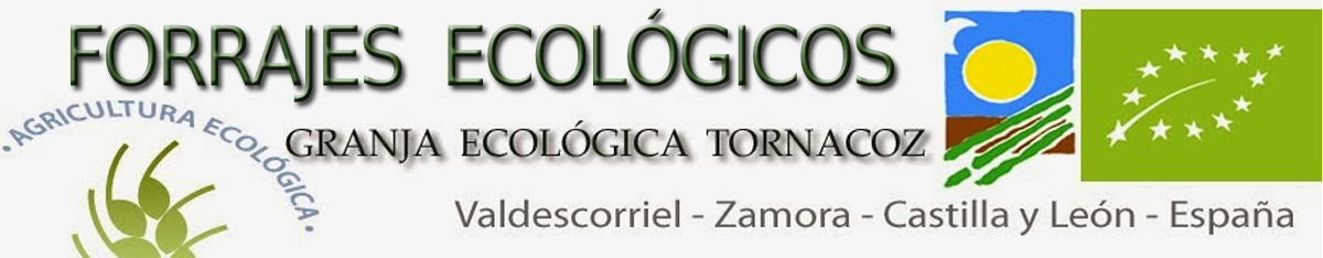 FORRAJES ECOLOGICOS