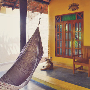 Surf n Sun Bungalow, Arugam Bay