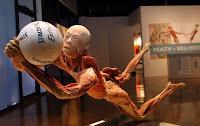 The Human Body Exhibition Prague