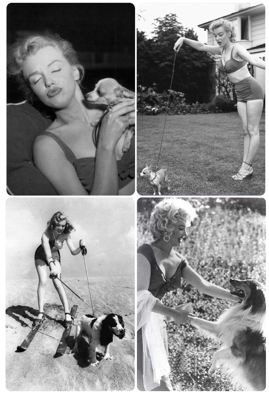 Marilyn monroe sex pron not