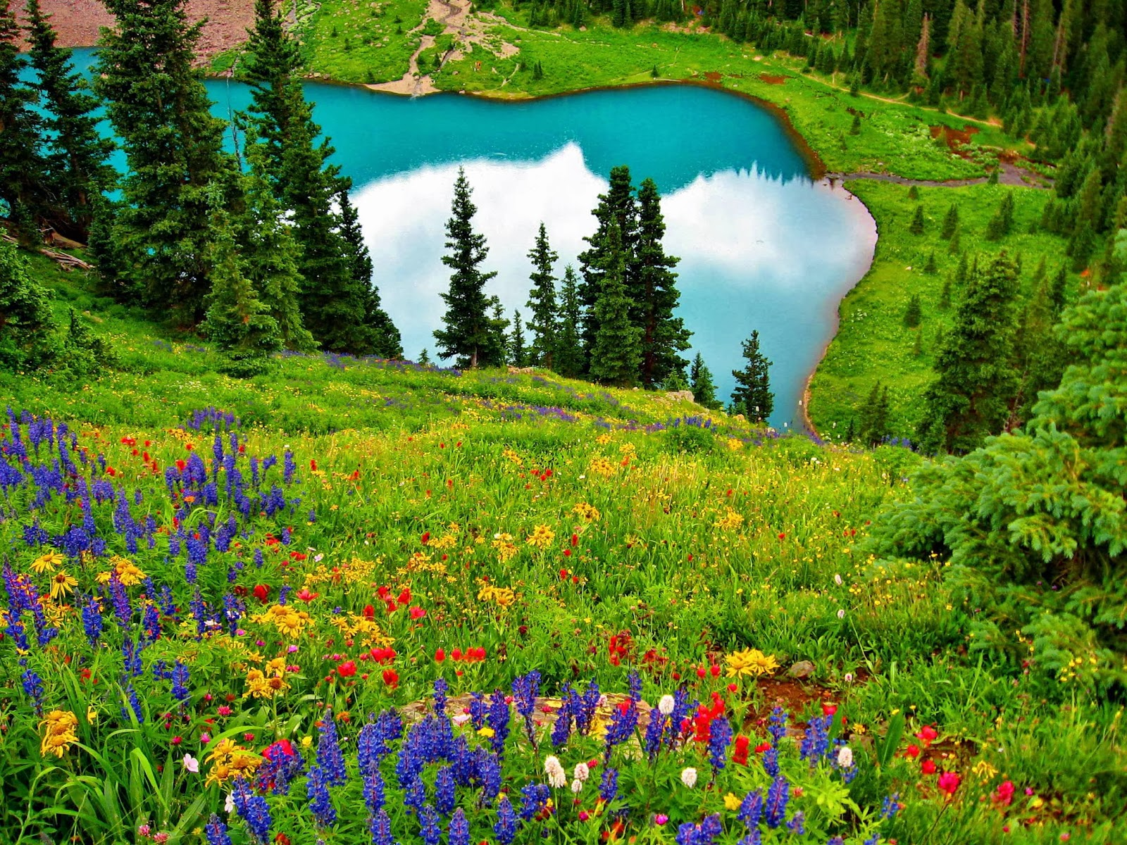 Beautiful Field Wallpapers | Most beautiful places in the ...