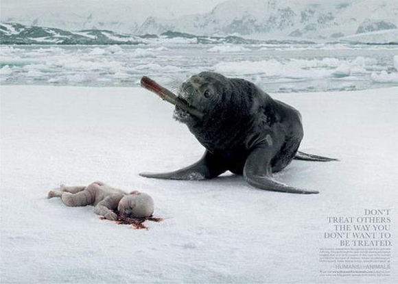 Humans or Animals controversial print ad
