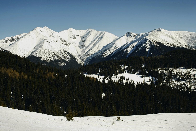 Babki - panorama