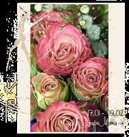 http://kafescrapomama.blogspot.ru/