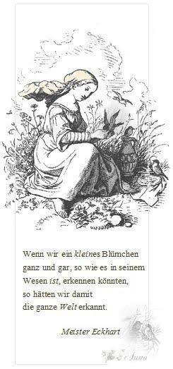 vöglein