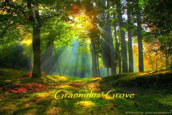 <center>Grannulus&#39; Grove</center>