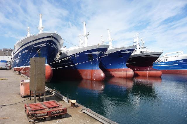 https://www.pressandjournal.co.uk/fp/business/north-of-scotland/767592/fish-fraud-crackdown-is-helping-scots-fleet/