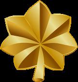 lieutenant colonel:Amirul Z