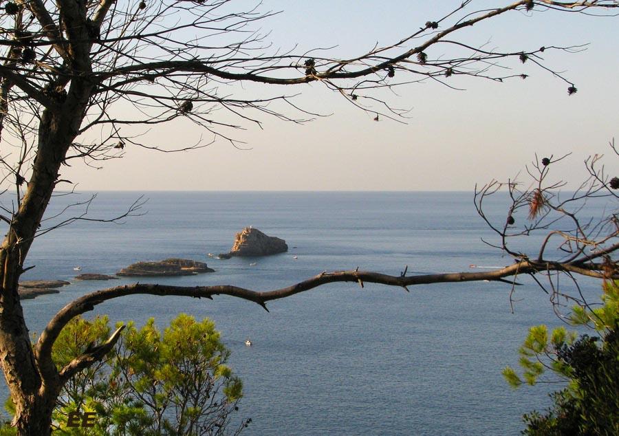 Parc del castell malgrat de mar