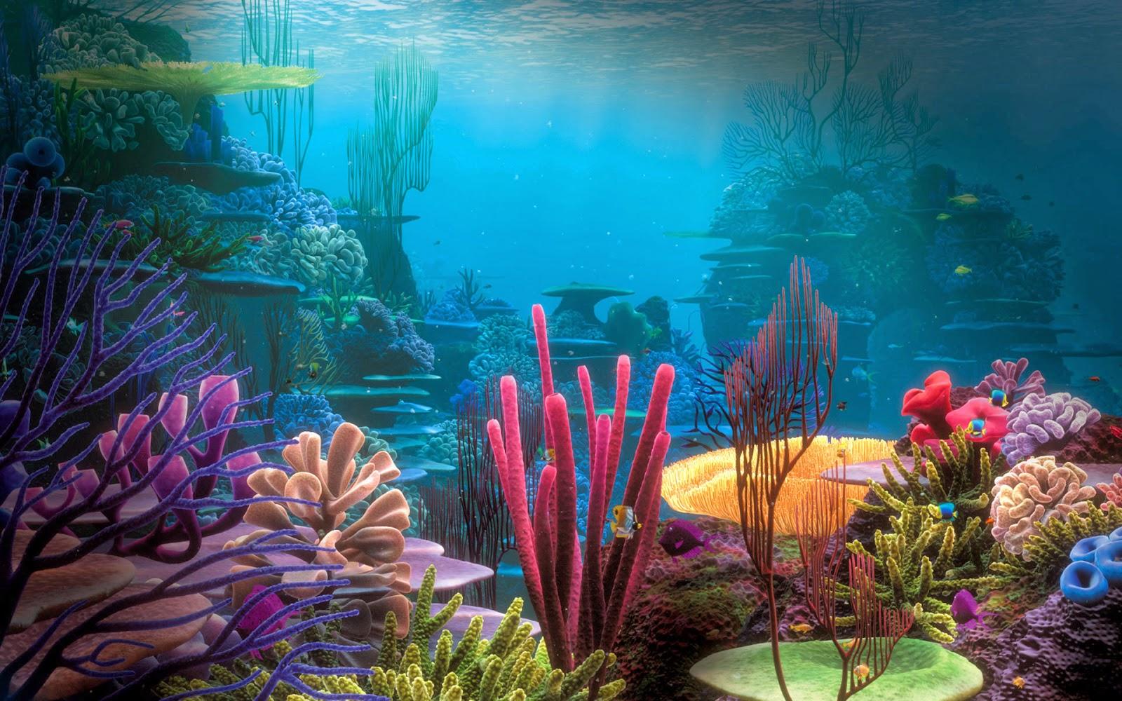 mercanlar tehlikede