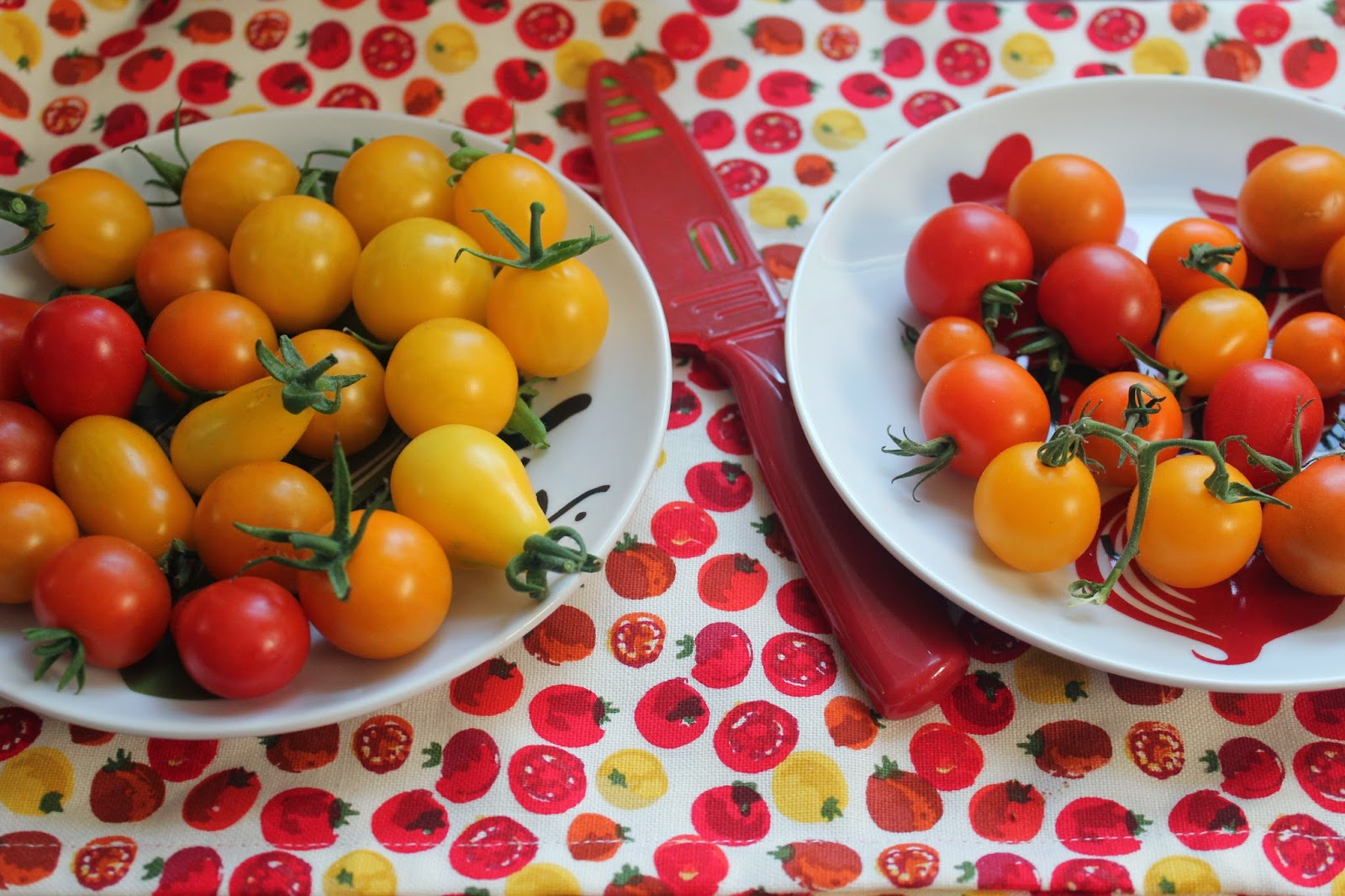 Tomatoes from Megan from Delicious Dishings's garden