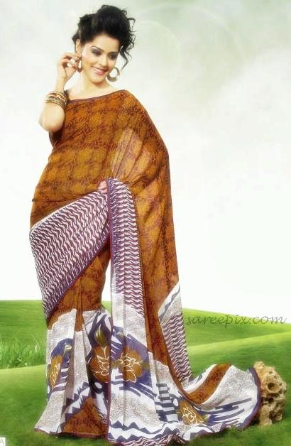 Priyanka_chhabra_saree