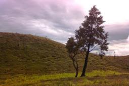 Ketentuan Denda Pelanggaran Di Kawasan Gunung Prau Jawa Tengah