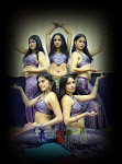 SHOW BELLY DANCE / Profesional