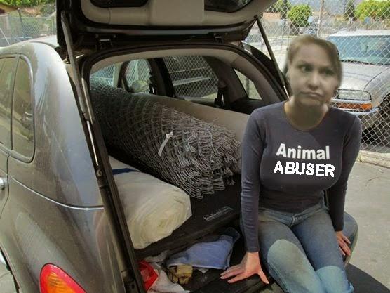 mary cummins animal cruelty