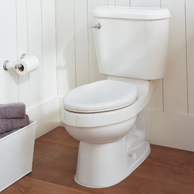 8 Easy Ways to Find Your Perfect Toilet