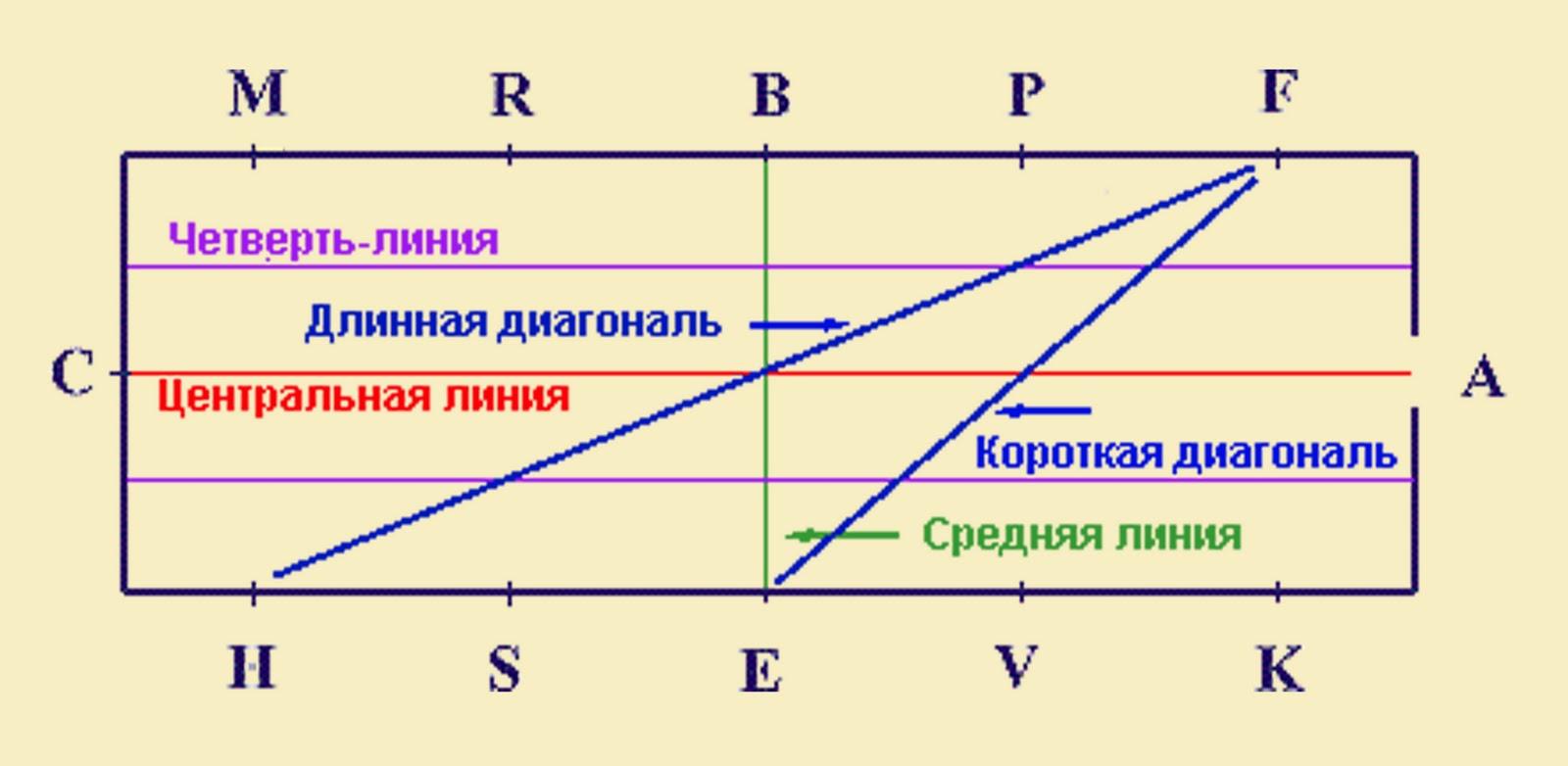 Схема букв в манеже для выездки