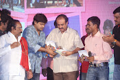 Nenu Naa Friends Audio release function-thumbnail-7