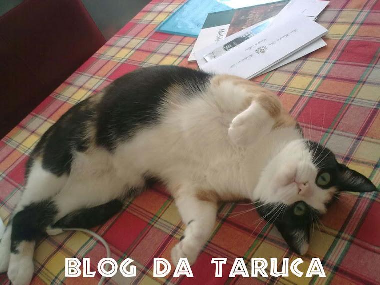 blog da taruca
