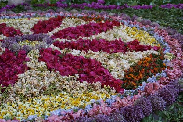 Calles adornadas con flores guia de jardin for Guia de plantas de jardin