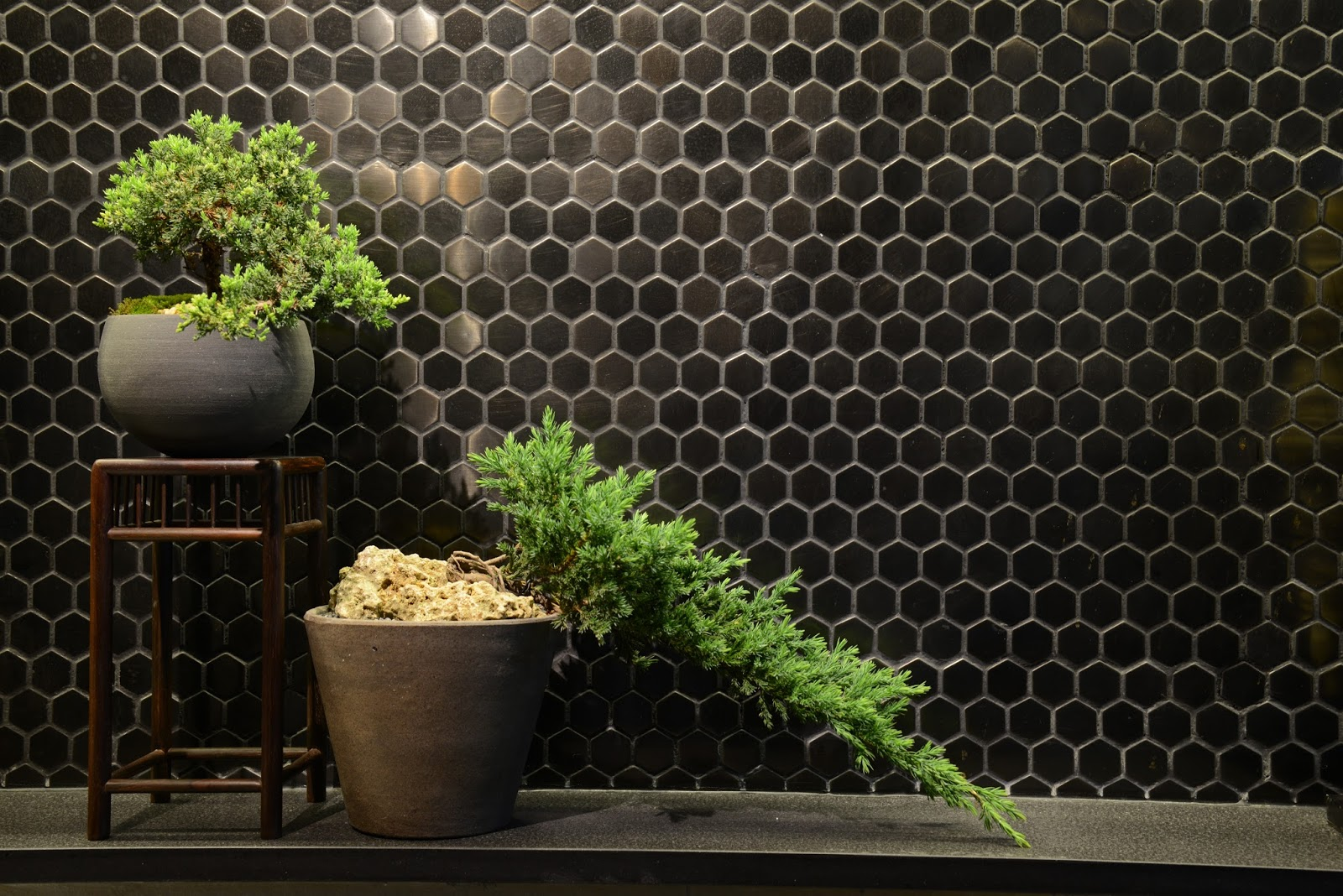 Green Monday x OVO Green Living Emporium opens World's First Plant ...