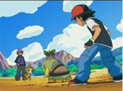 ¡Diferentes estilos de batalla, diferentes Pokémon!
