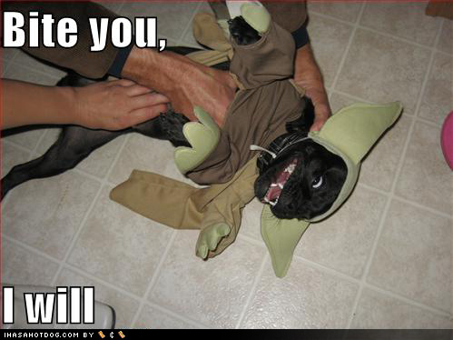 Black Ops Funny Dogs. Funny Smart Dog Yoo Baby
