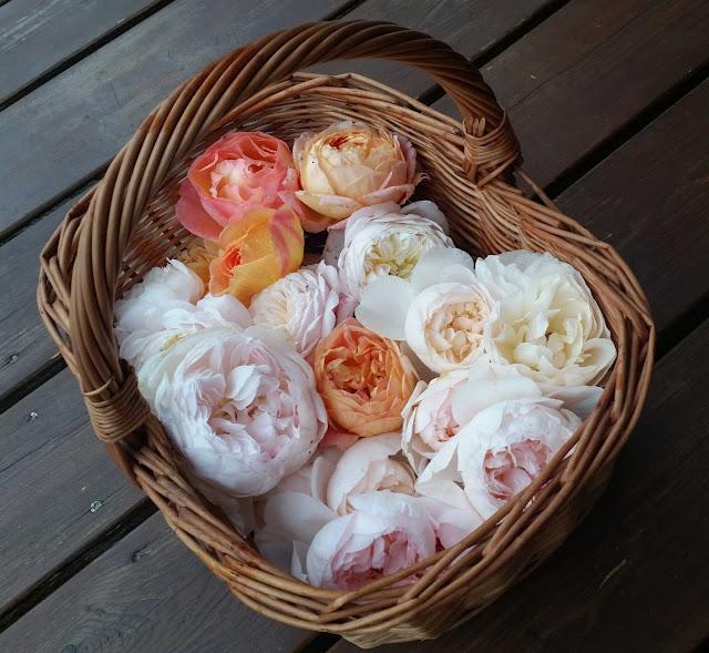 Korg med rosor