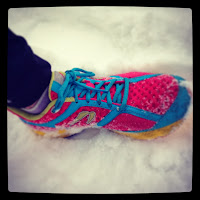 Newtons in the snow