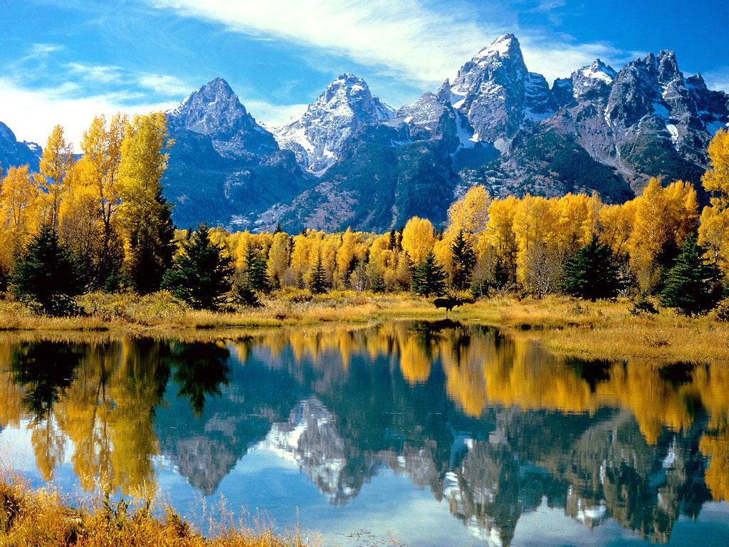 http://1.bp.blogspot.com/-njVyyTT26_w/TisREaf-RNI/AAAAAAAAAy8/BwC5sBK8Imo/s1600/autumn_grandeur%252C_grand_teton_national_park%252C_wyoming%252C_usa.jpg