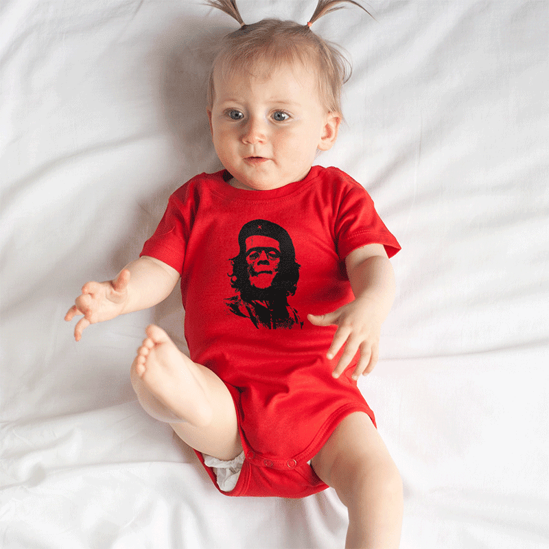 http://www.lolacamisetas.com/es/producto/575/camiseta-che-frankenstein