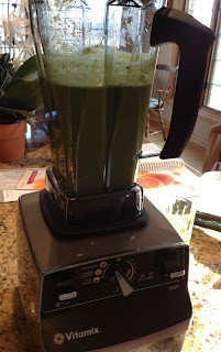 Vitamix It's Easy Being Green