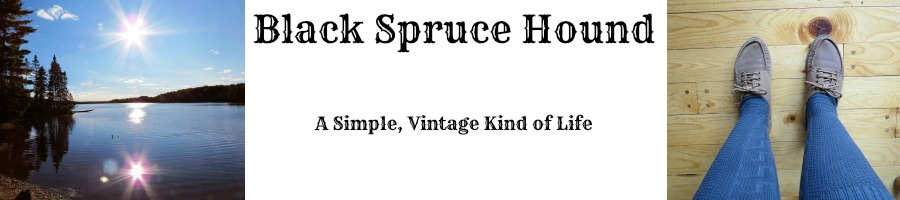 Black Spruce Hound