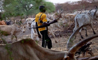 Kogi govt finally speaks on herdsmen killings in communities