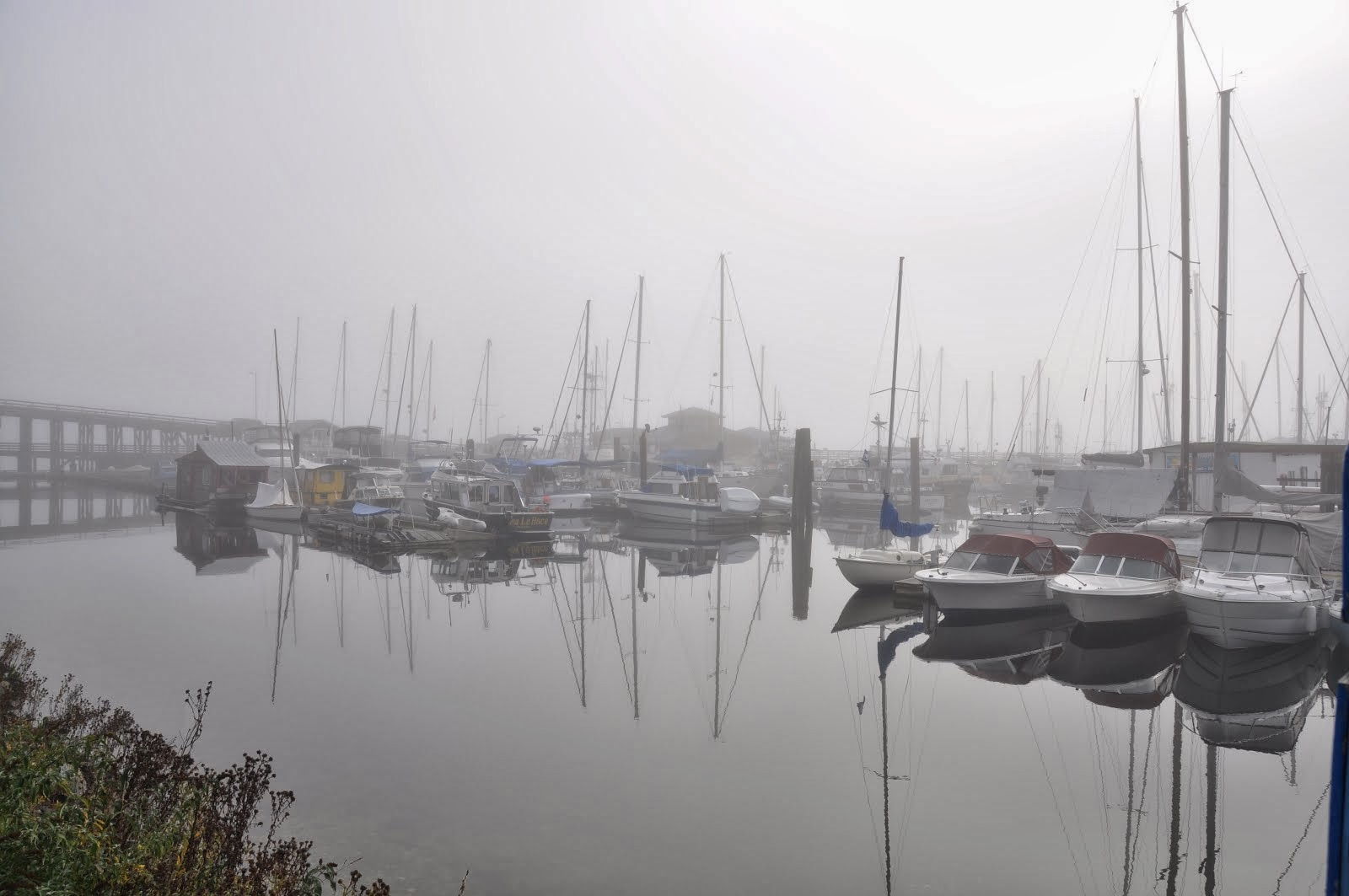 Gibsons Landing 'in the fog'