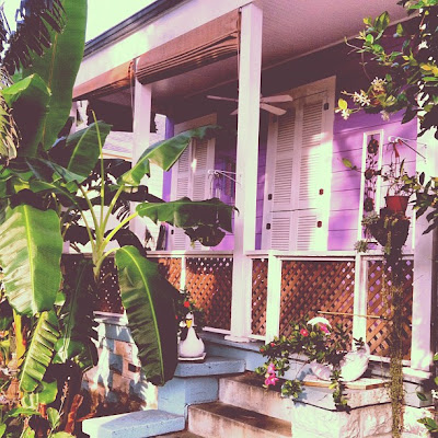New Orleans Purple Creole Shotgun Porch