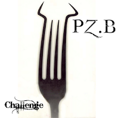 Challenge PZB