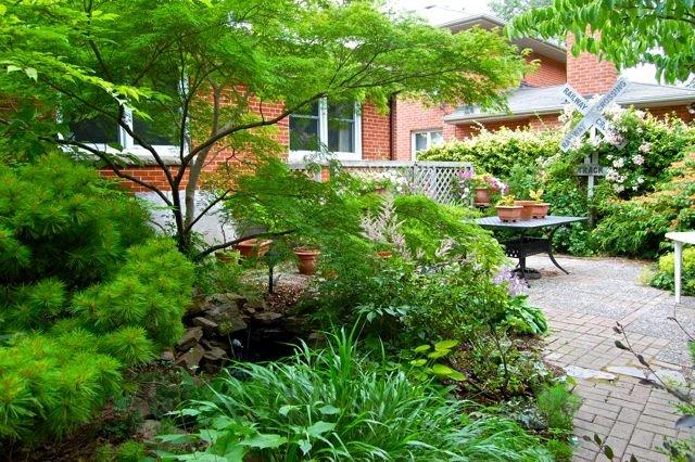 No Grass Backyard Pictures : backyard+garden+with+no+grass++StarGarden1jpg