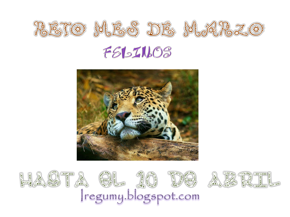 "Reto Iregumy ""Felinos"""