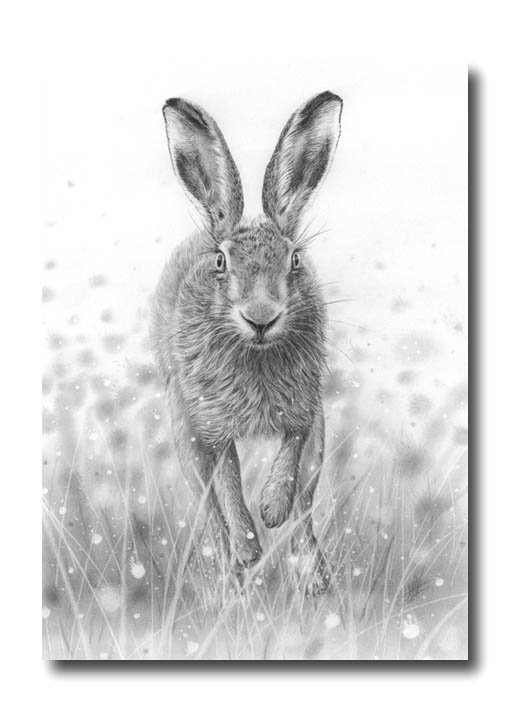 Hare running drawing - photo#8