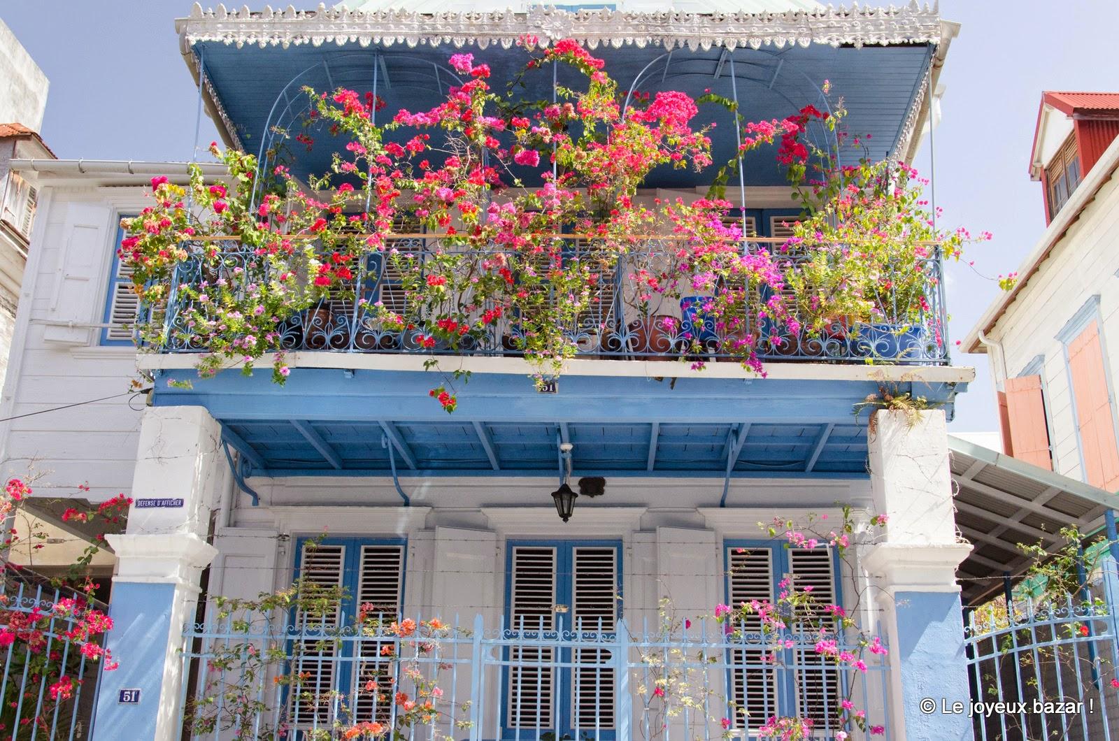 Guadeloupe - Pointe à Pitre - bougainvillées