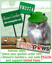 Gardening Cats supporting United Paws