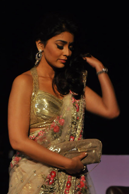sriya saran hot sexy photos