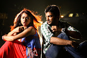 3 Idiots Telugu movie photos gallery-thumbnail-12