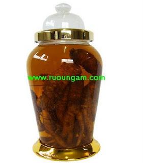 Cao trăn: Binh Ngam Ruou11l
