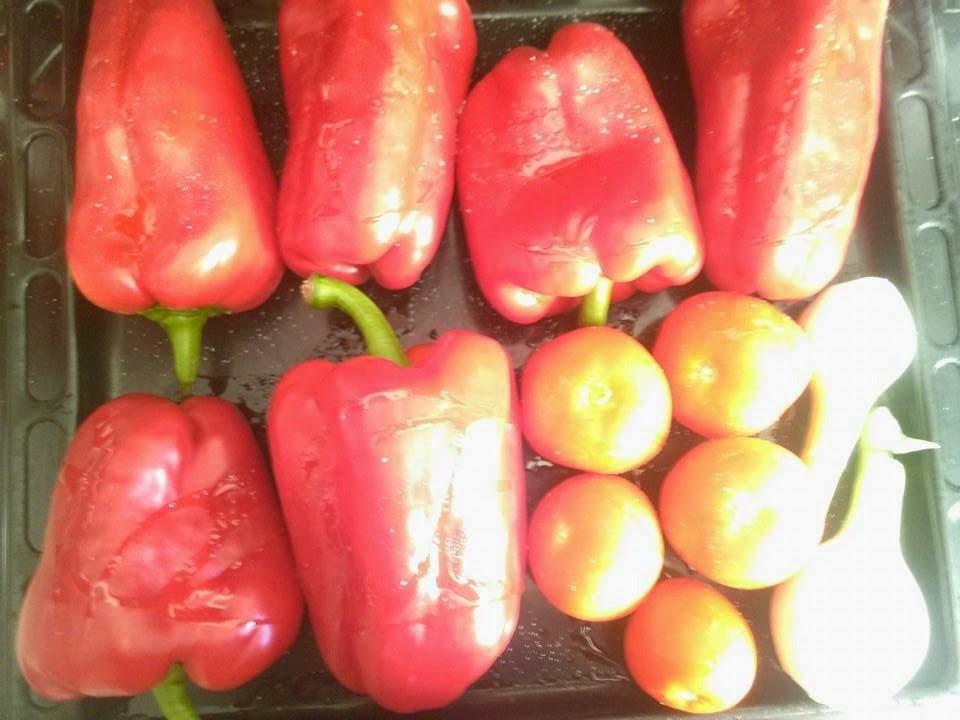 verduras en el horno