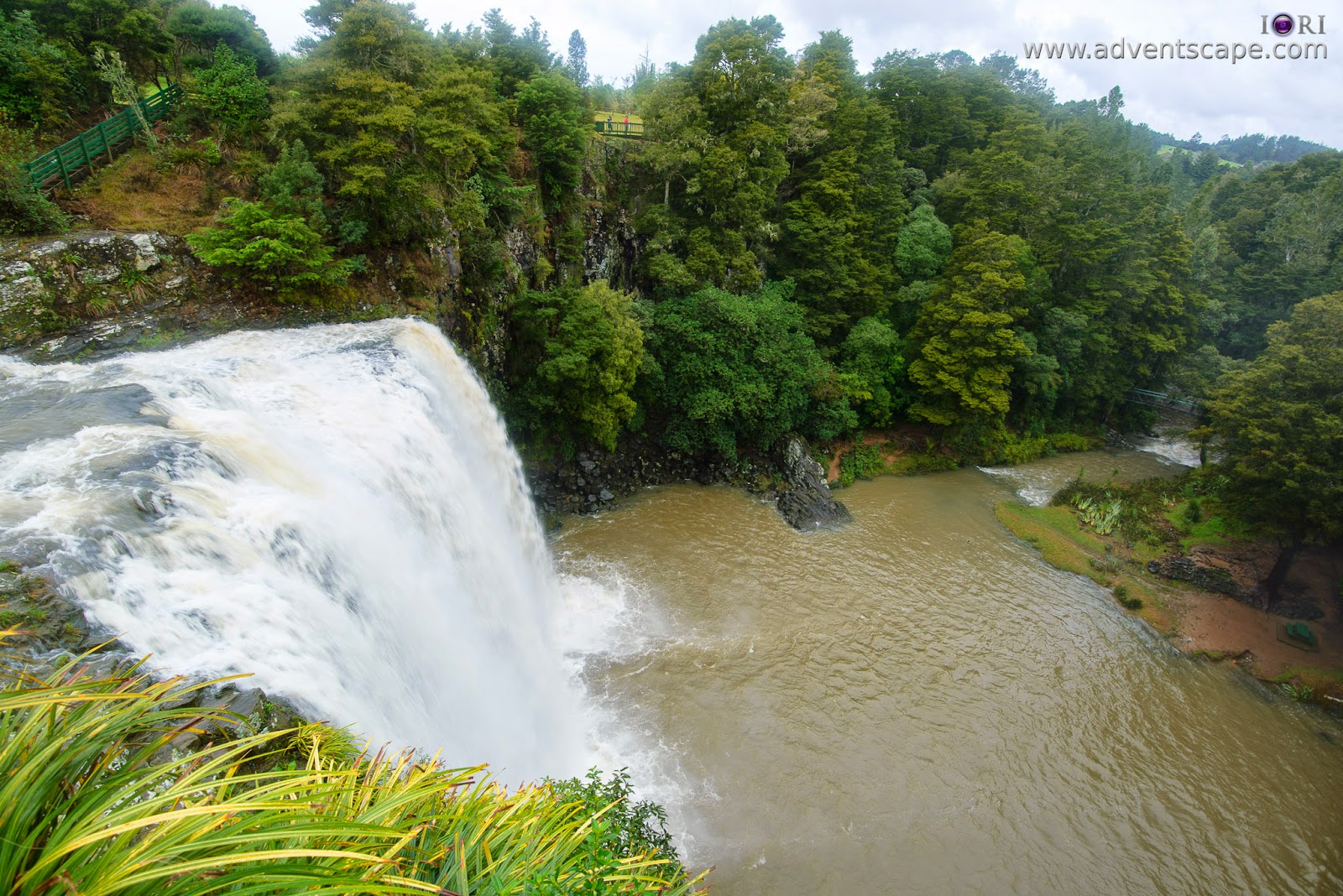 Philip Avellana, adventscape, iori, Whangarei falls, waterfalls, North Island, New Zealand, travel, tour, places to visit, landscape, nature photos, vantage point